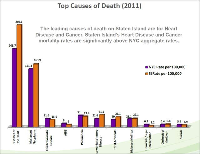 Heart_Disease_and_Cancer_Statistics_on_SI-border