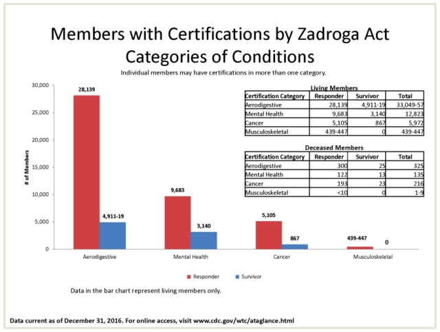 members with certifications by category