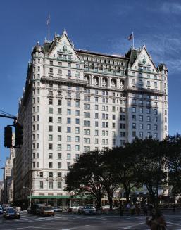 new_york_-_manhattan_-_plaza_hotel.jpg