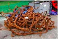 tangle of wtc steel.jpg